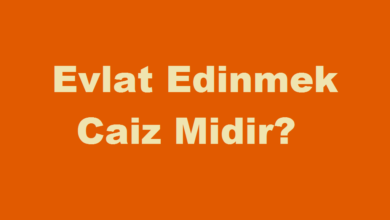 Photo of Evlat Edinmek Caiz Mi?