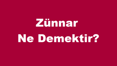 Photo of Zünnar Ne Demektir?