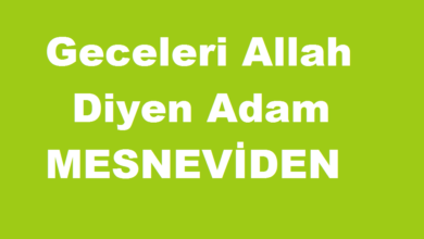 Photo of Geceleri Allah Diyen Adam / Mesneviden