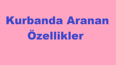 Photo of Kurbanda Aranan Özellikler
