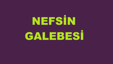 Photo of Nefsin Galebesi