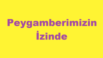 Photo of Peygamberimizin İzinde