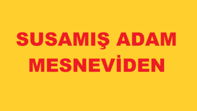 Photo of Susamış Adam & Mesneviden